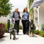 aged care resident walking dog as part of Whiddon Creature Comforts Program